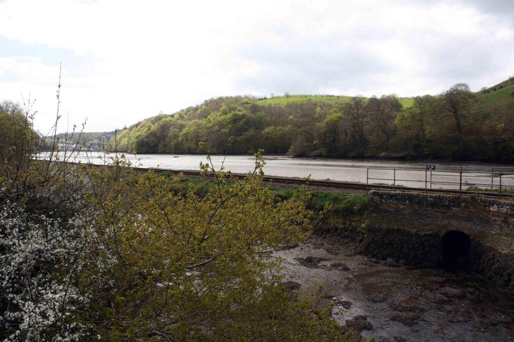Looe railway and river