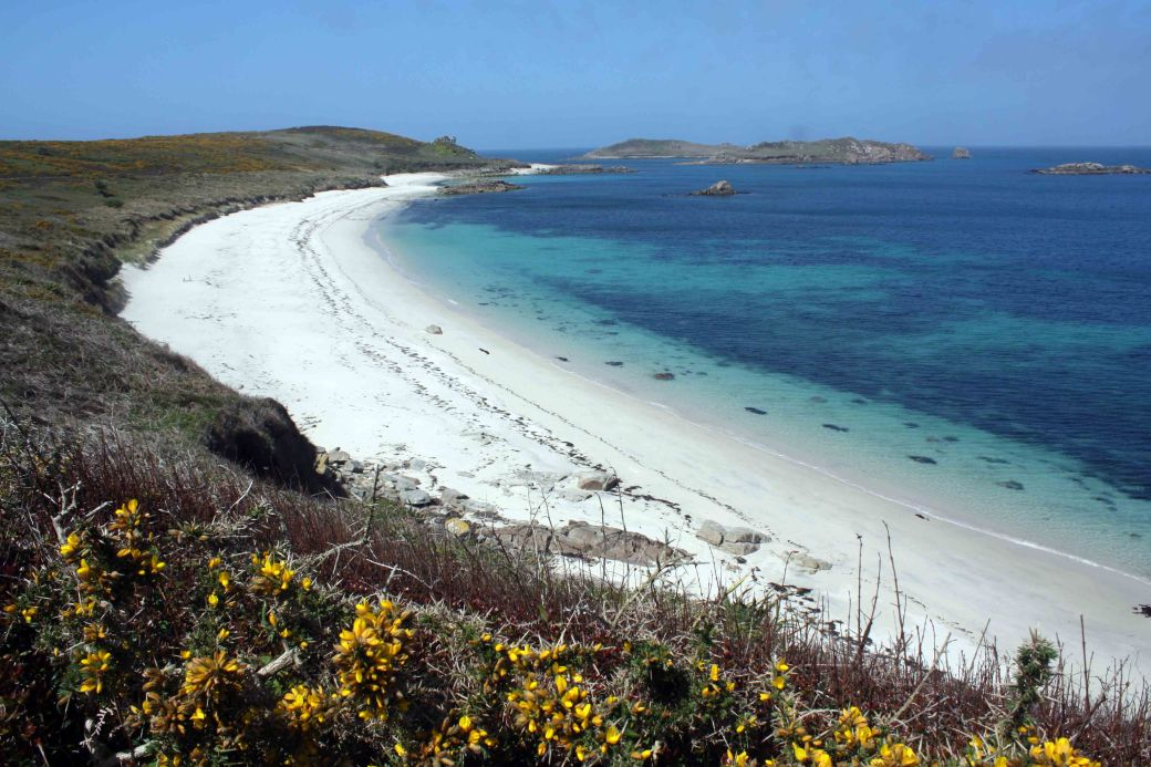 St Martins bay colours wow