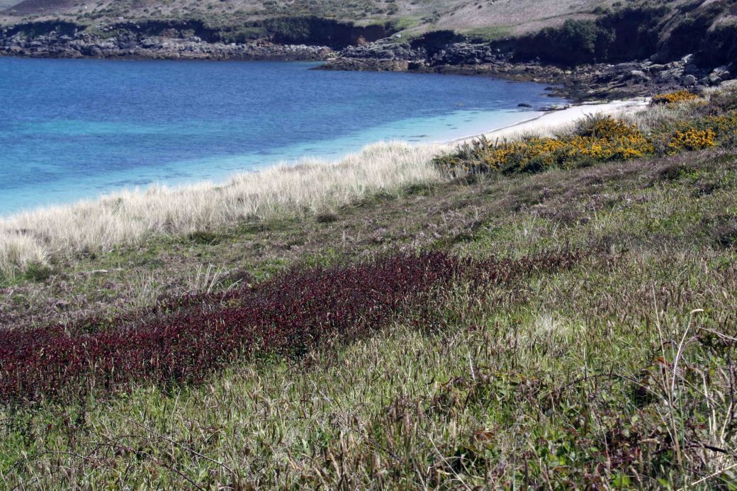 St Martins bay colours wow3