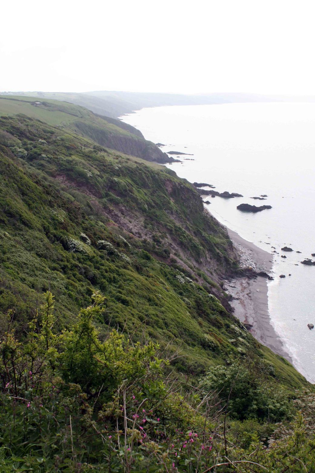 Whitsand view2