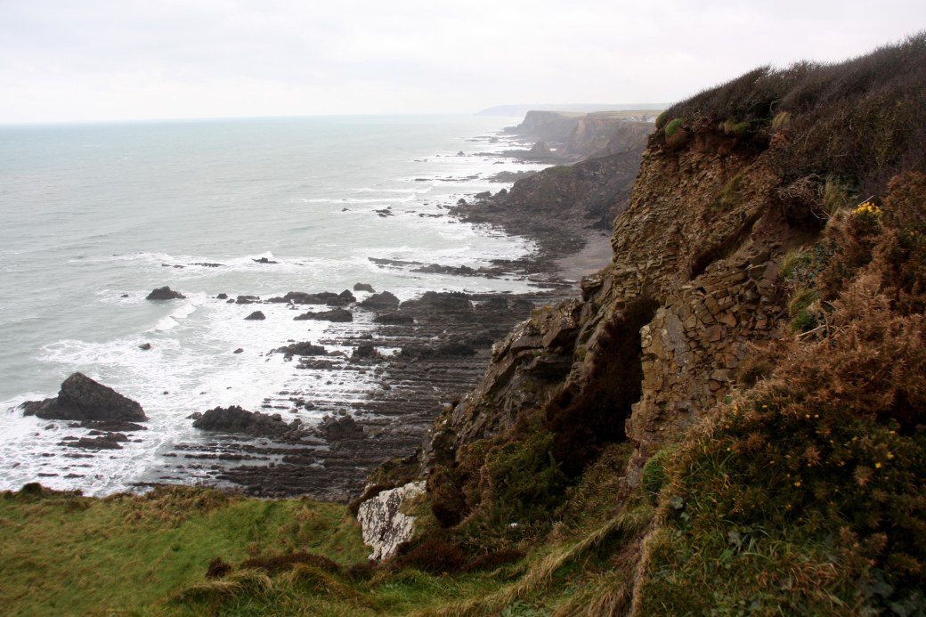 widemouth bay view