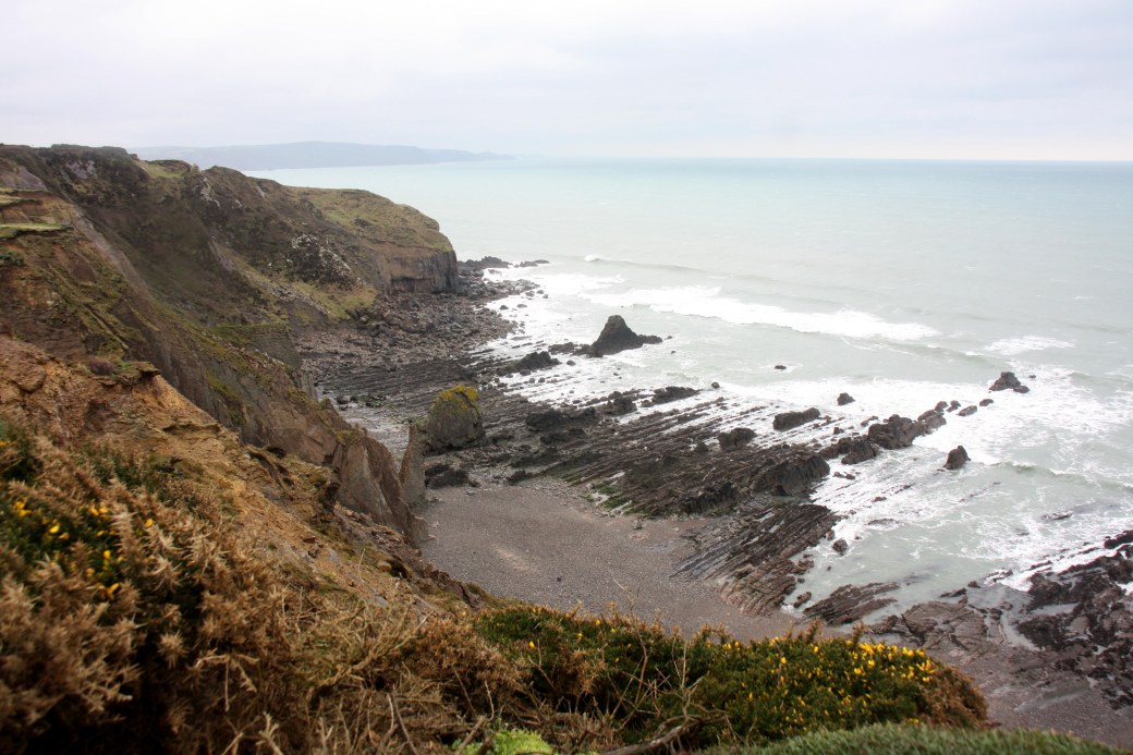 widemouth bay view2